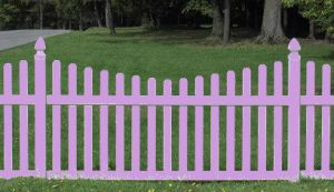 picket fence purple