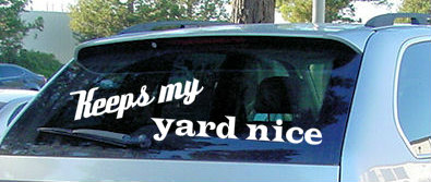 nice yard