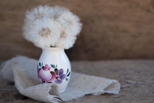 plant-white-dandelion-flower-petal-vase-1291968-pxhere.com
