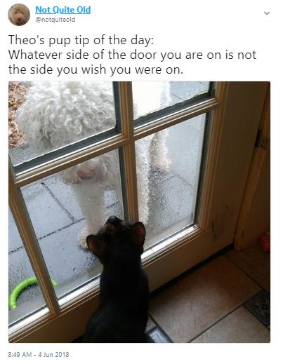 tip door