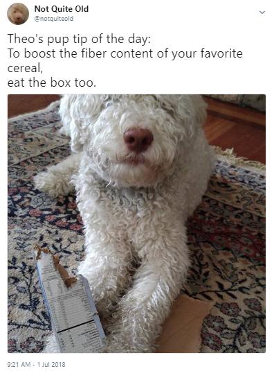 tip fiber