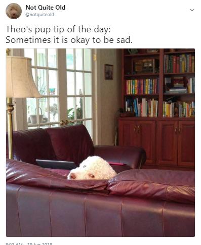 tip sad