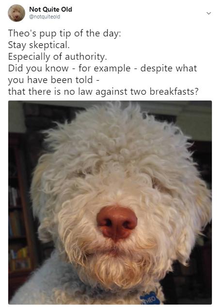 tip skeptical